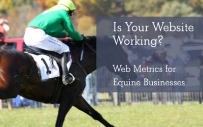 Understanding Web Metrics for Equine Businesses
