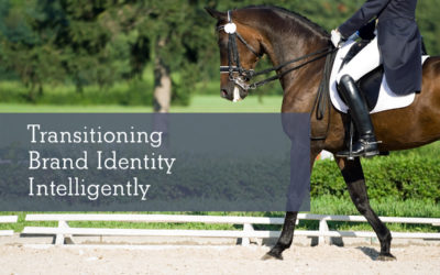 Transitioning Brand Identity Intelligently