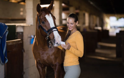 5 Equestrian Companies Pushing Tech Boundaries